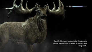 Skyrim Beards (5)