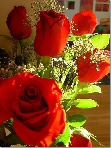 san valentin flores (21)