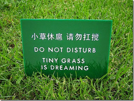 signs-lost-translation-004