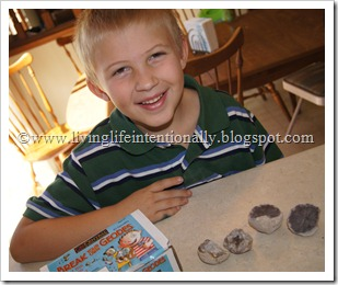 Earth Science Homeschool - Geodes
