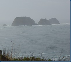 Oregon coast Tilamook 050