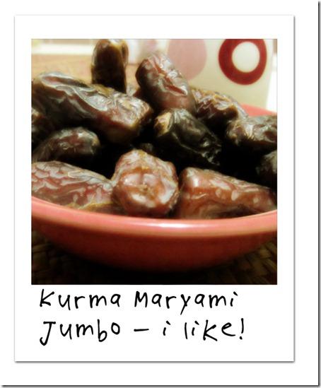 kurmamaryami-dayeleven
