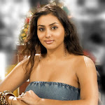 Namitha Hot (19).jpg