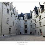 castillodepau2.jpg