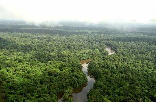 Parque Nacional Montanhas do Tumucumaque, Laranjal do Jari - Amapà