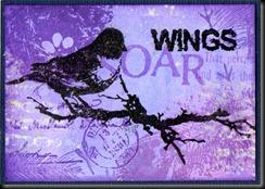 wings 4b