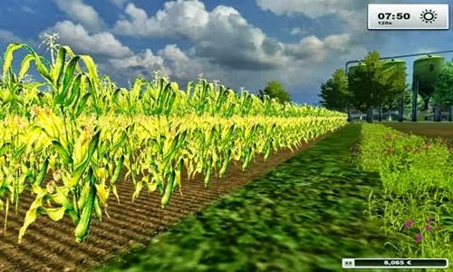 Texture-mais-farming-simulator-2013-Mod