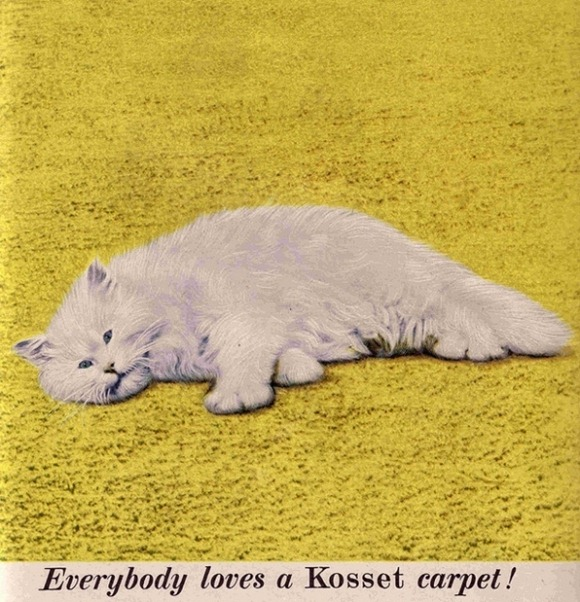 Vintage-Cat-Advertisements-20