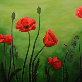 Poppies by Odeta Balcia - Painting All Painting ( poppies acrylic poppy )