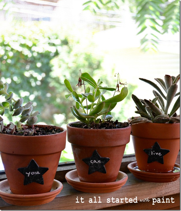 chalkboard_paint_terracotta_planters_with_succulents