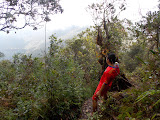 Mulu - Enjoying the view - and a novel way to hold a water bottle! (copyright Dan Quinn / Royal Geographical Society (with IBG) September 2014)