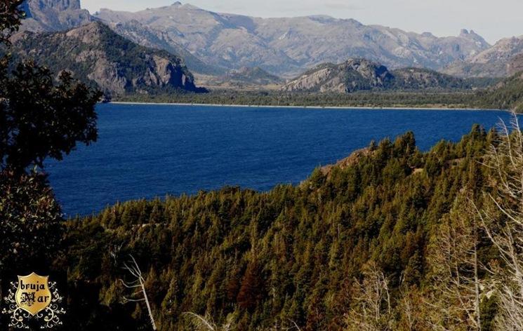 Bosques Americanos-debrujaMar-0700