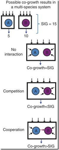 microbial_consortium