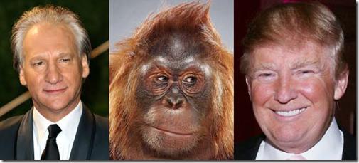 Donald Trump bet