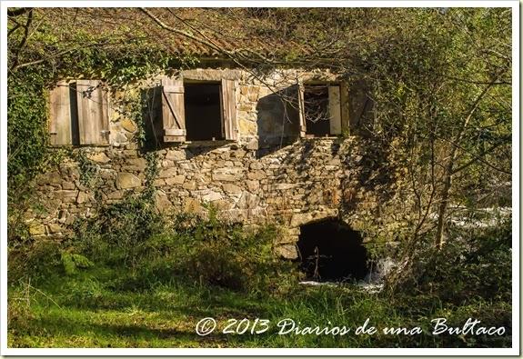 Refugio_Verdes-95
