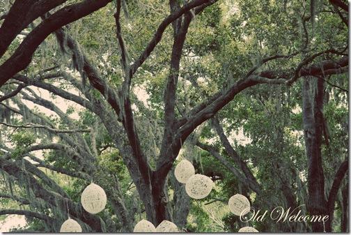 chelseas wedding 002