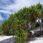Maldivi (9).jpg