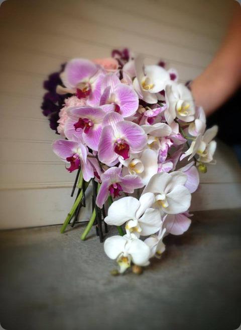 9897_10151393432186879_205412973_n stacy k floral