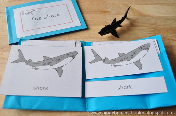 The Shark Learning Pack