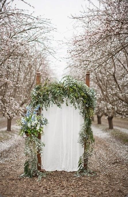 arch DianaMcGregor_AlmondBlossoms_17 fleurie