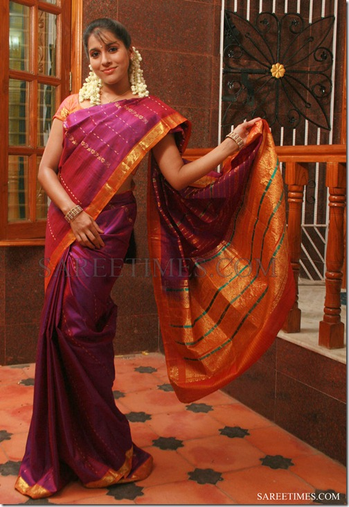 Rashmi_Gautam_Traditional_Saree (2)