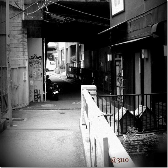 800xblogshibu062-002