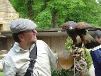 Falconry display.