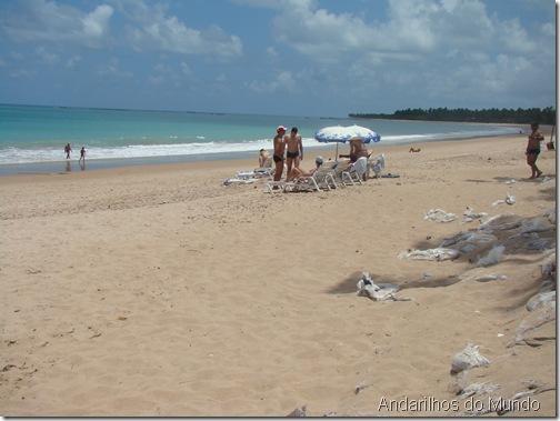 praia em frente ao resort Salinas Maceio com sacos rasgados - broxante