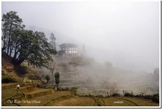 Bhutan 410