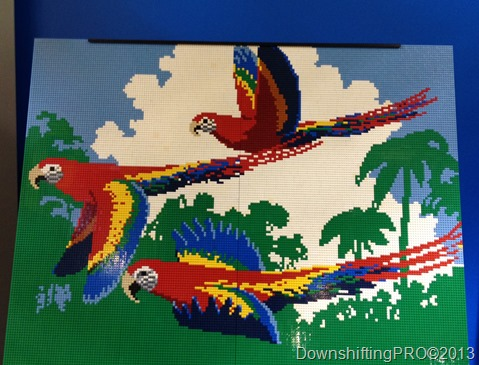 LEGO_parrots_DownshiftingPRO_WordlessWednesday