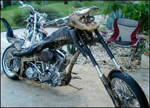Alligator-Bike-croc_bike_01