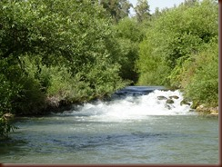 Snir River in Golan Hieghts