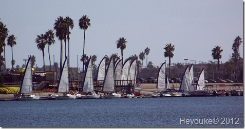 Mission Bay sailboats