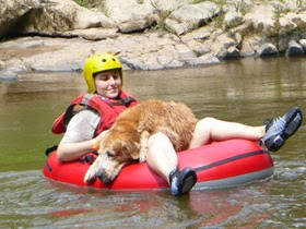 Pets adventure 16 (237)
