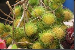 Buah-buahan tempatan 012