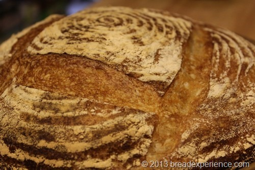 10-percent-whole-wheat-loaf_013_thum