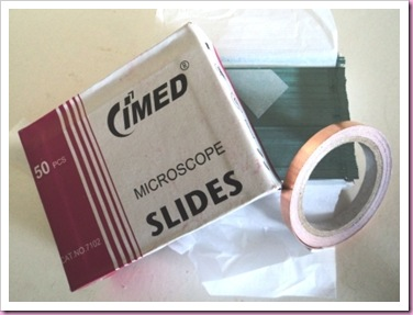 Microscope Slides for pendant Making