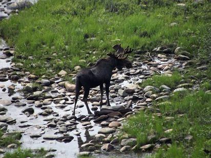 Alaska 166