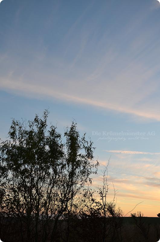 Sonnenuntergang Wremen 231113 (2)