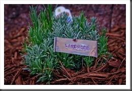 GardenMarker110626-1