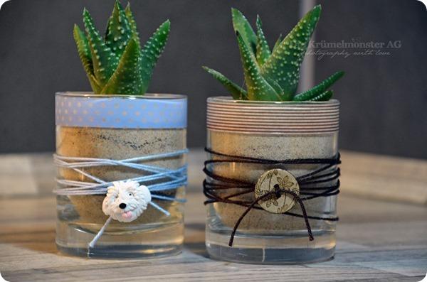 DIY Kaktustöpfchen