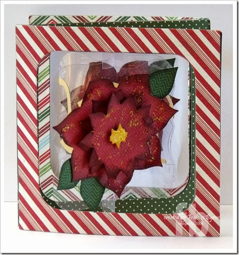 PoinsettiaAccordion4-wm