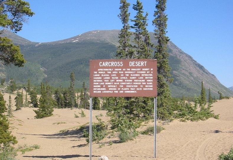 carcross-desert-1