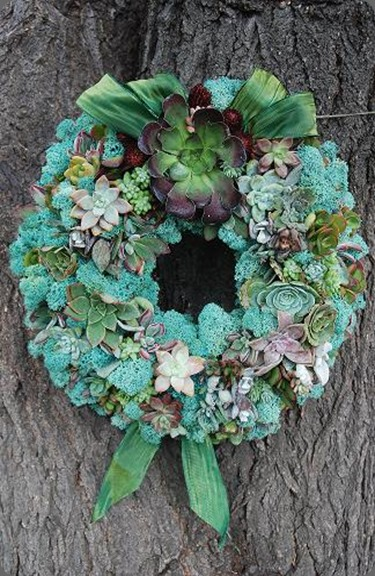 Teal-Succulent-Wreath seed floral