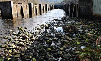 Weir Dam 10