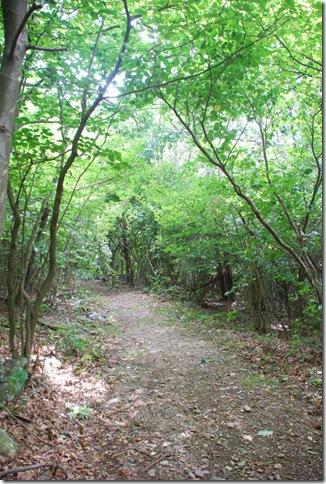 08-31-11 Shenandoah NP - CCC Ranger Hike 001