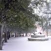 inverno_42_20101008_1215023918.jpg