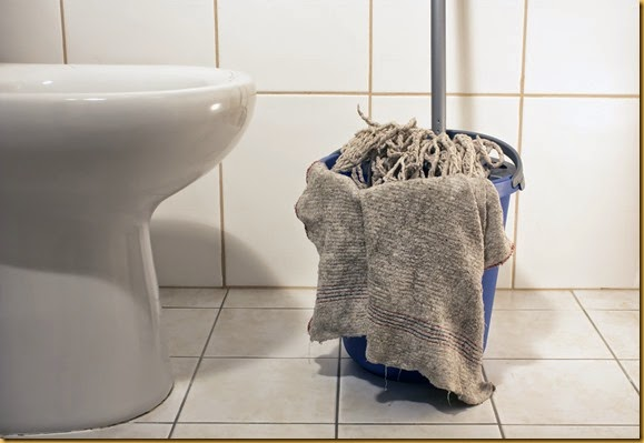 15 Ways to Clean Toilet-Image#1