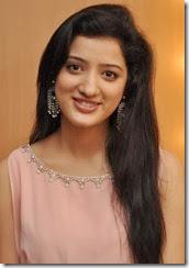 Actress Richa Panai @ CV International Academy of Beauty Launch