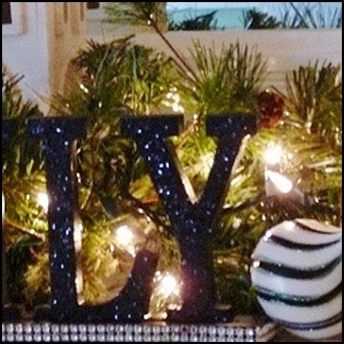 Christmas 2011 020 (800x600)